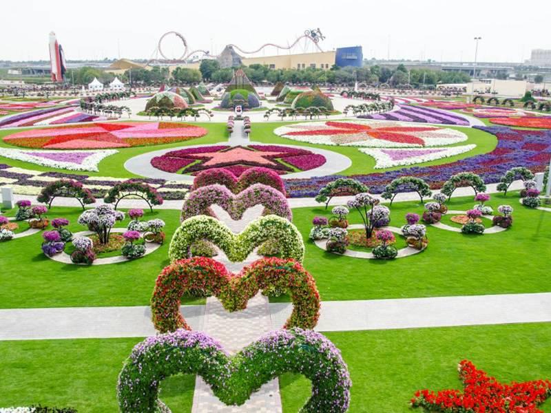 میراکل پارک