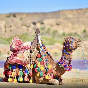 تور چابهار از شیراز